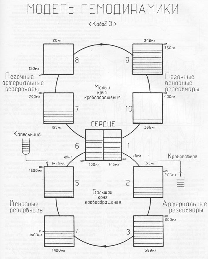 Структурная схема модели